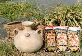 Tipos de arroz para paella